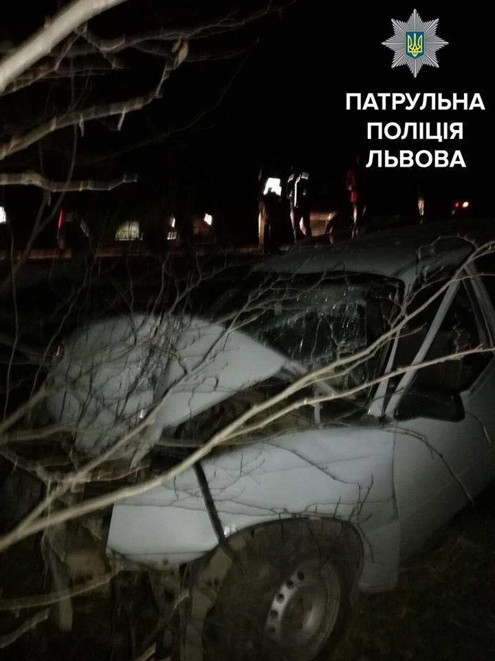 Поблизу Львова автомобіль злетів у кювет: фото з місця ДТП, фото-1