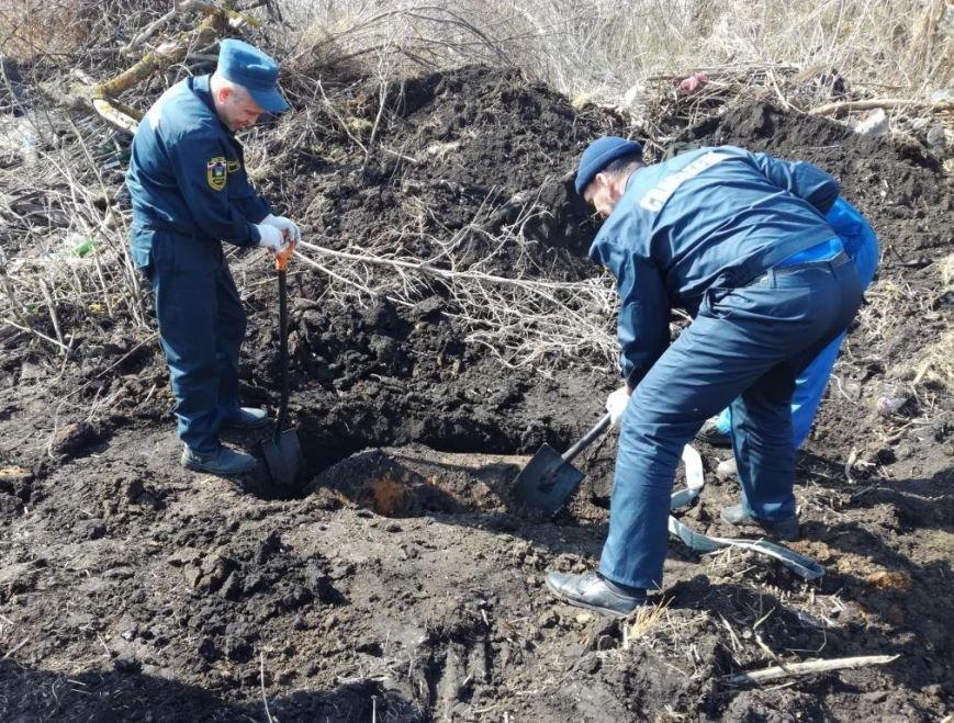 Белгородец нашёл в лесу фугасную авиабомбу, фото-1