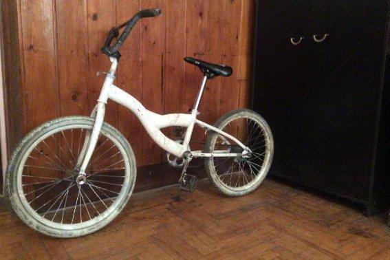 У Мукачеві хлопець побив 15-річну дівчинку і забрав у неї велосипед: фото, фото-1