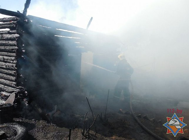 В Полоцком районе пенсионерка вместе с сухой травой сожгла сарай. ФОТО/ВИДЕО, фото-2