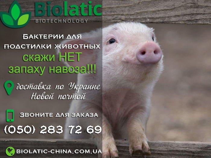 Биолатик в Украине, фото-1