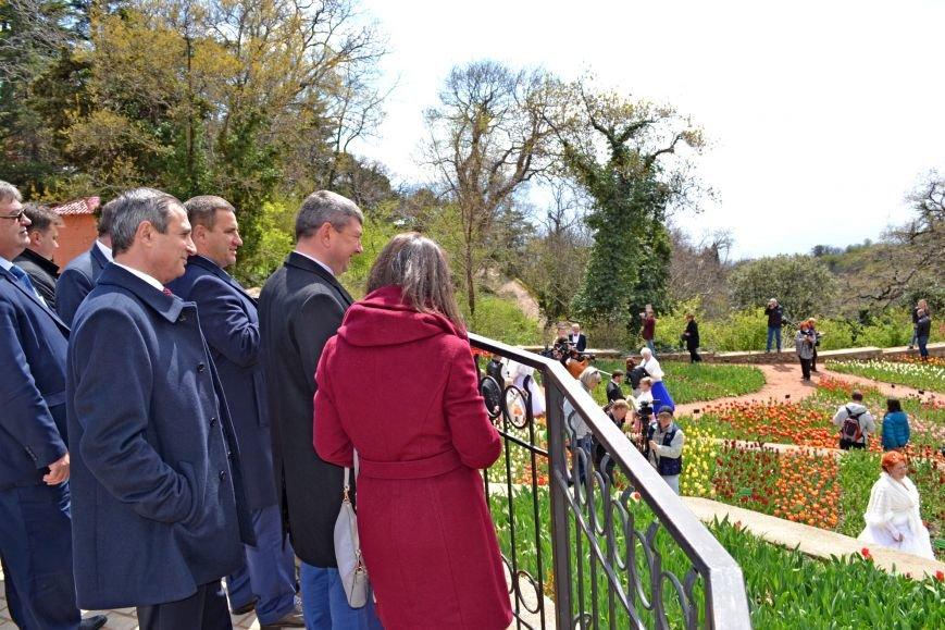 В Никитском ботаническом саду открыли парад тюльпанов и выбрали цветочный символ Кореиза, фото-4
