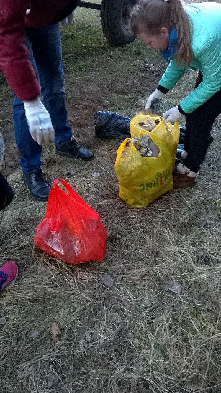 «Хороший пример людям». Полочане по личной инициативе убрали лесок в районе Аэродрома. ФОТО, фото-4