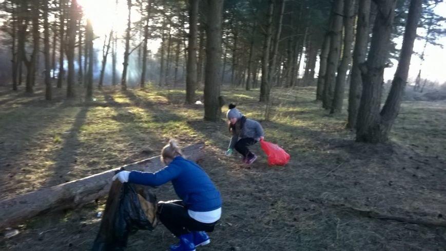 «Хороший пример людям». Полочане по личной инициативе убрали лесок в районе Аэродрома. ФОТО, фото-3