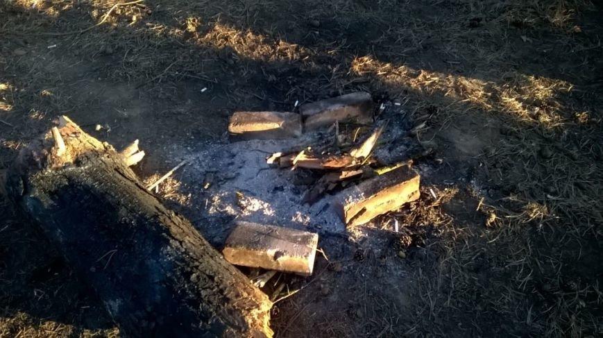 «Хороший пример людям». Полочане по личной инициативе убрали лесок в районе Аэродрома. ФОТО, фото-9