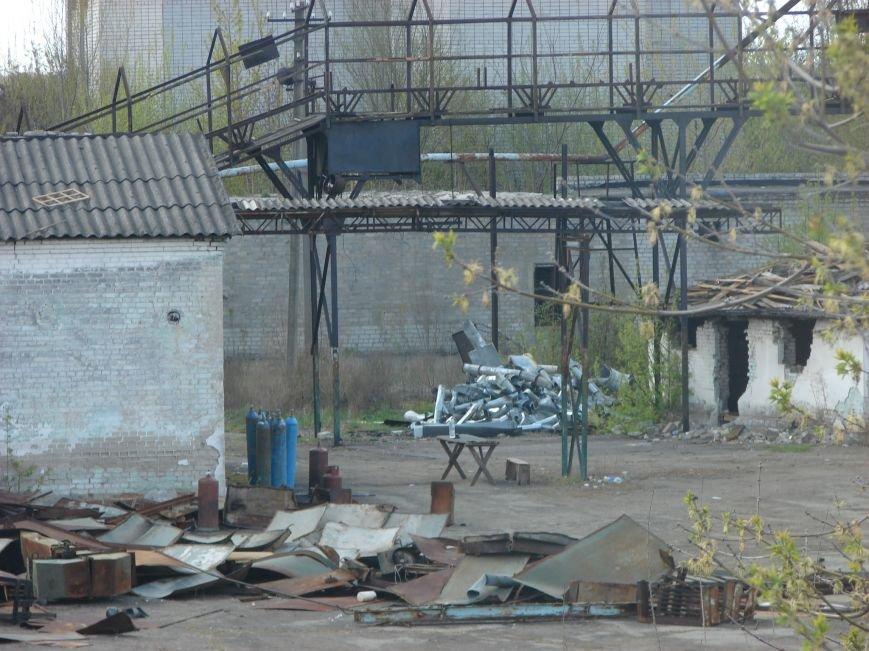Бывшую мельницу Павлограда разбирают по частям (Фото), фото-2