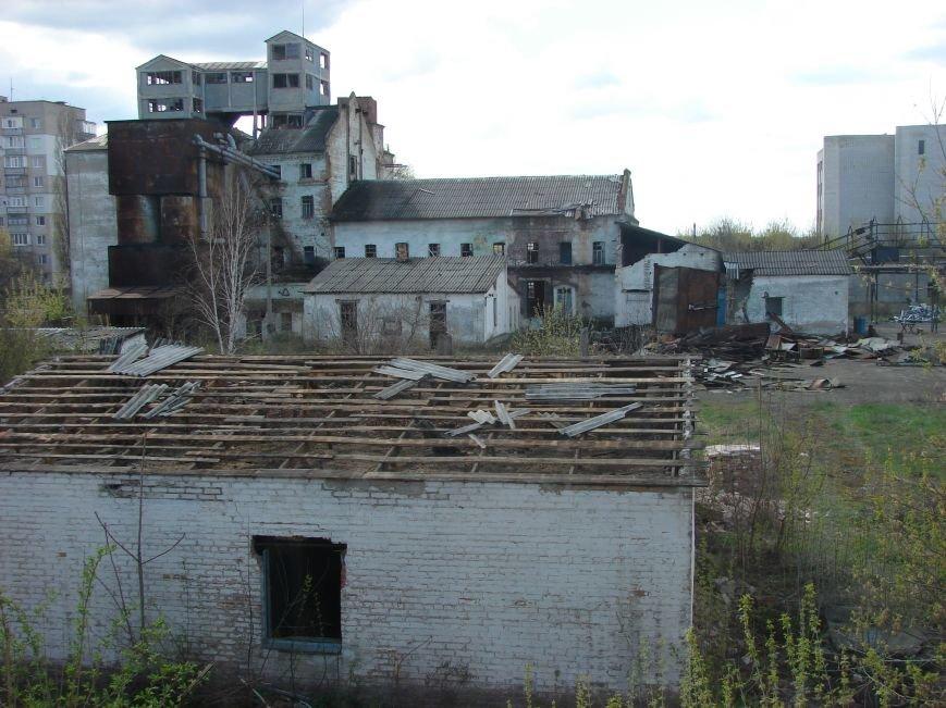 Бывшую мельницу Павлограда разбирают по частям (Фото), фото-3