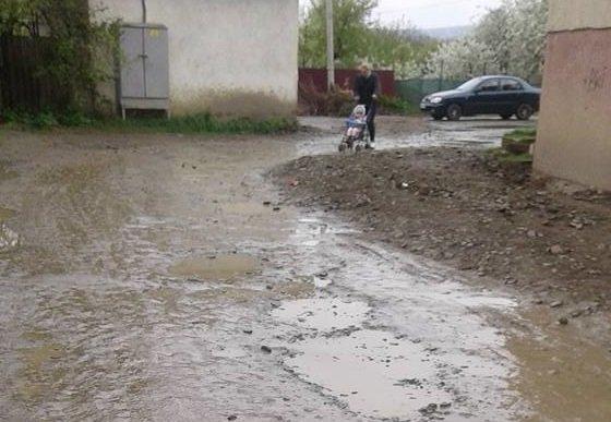 В Ужгороді батьки, які ведуть дітей у дитсадок №36, приносять на роботу болото: фото, фото-1