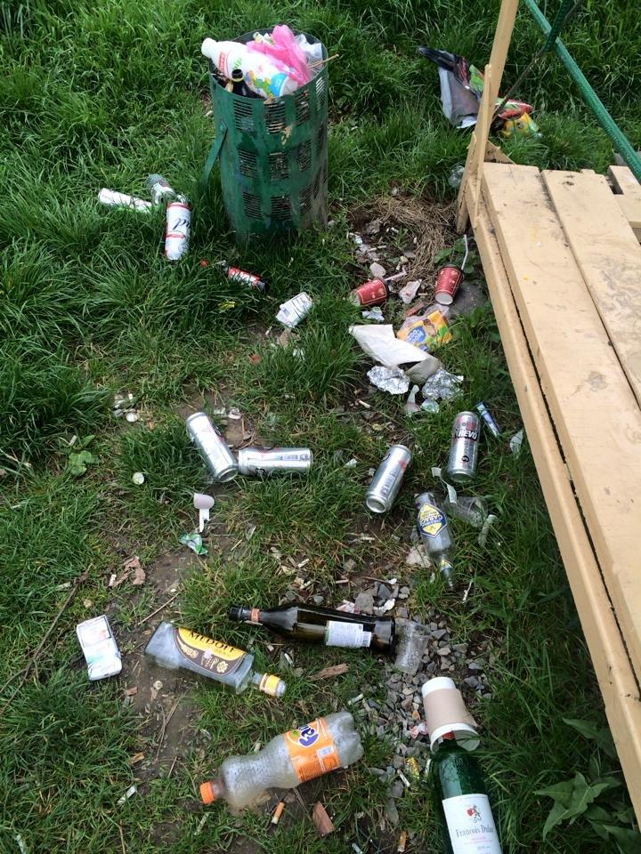 На березі Ужа у центрі Ужгорода - стихійне сміттєзвалище: фото, фото-6