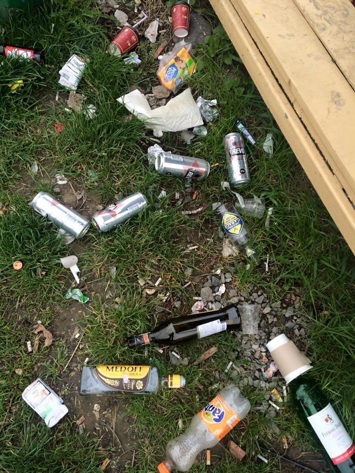 На березі Ужа у центрі Ужгорода - стихійне сміттєзвалище: фото, фото-8