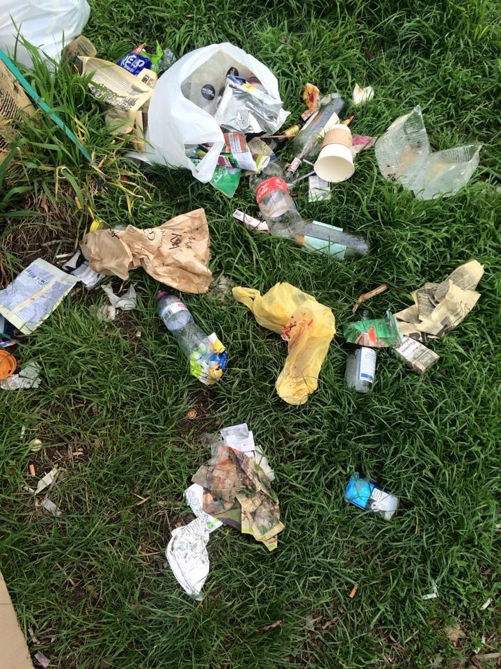 На березі Ужа у центрі Ужгорода - стихійне сміттєзвалище: фото, фото-2