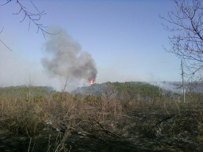 Сжигание травы возле энергообъектовможет оставить людей без света и уничтожить целые лесные массивы