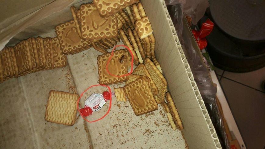 Як тарган розгулює печивом у одному із супермаркетів Ужгорода: фото, фото-1