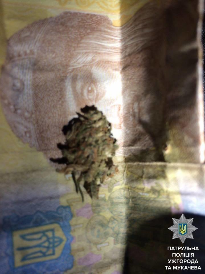 В Ужгороді патрульні затримали знервованого наркомана: фото, фото-2