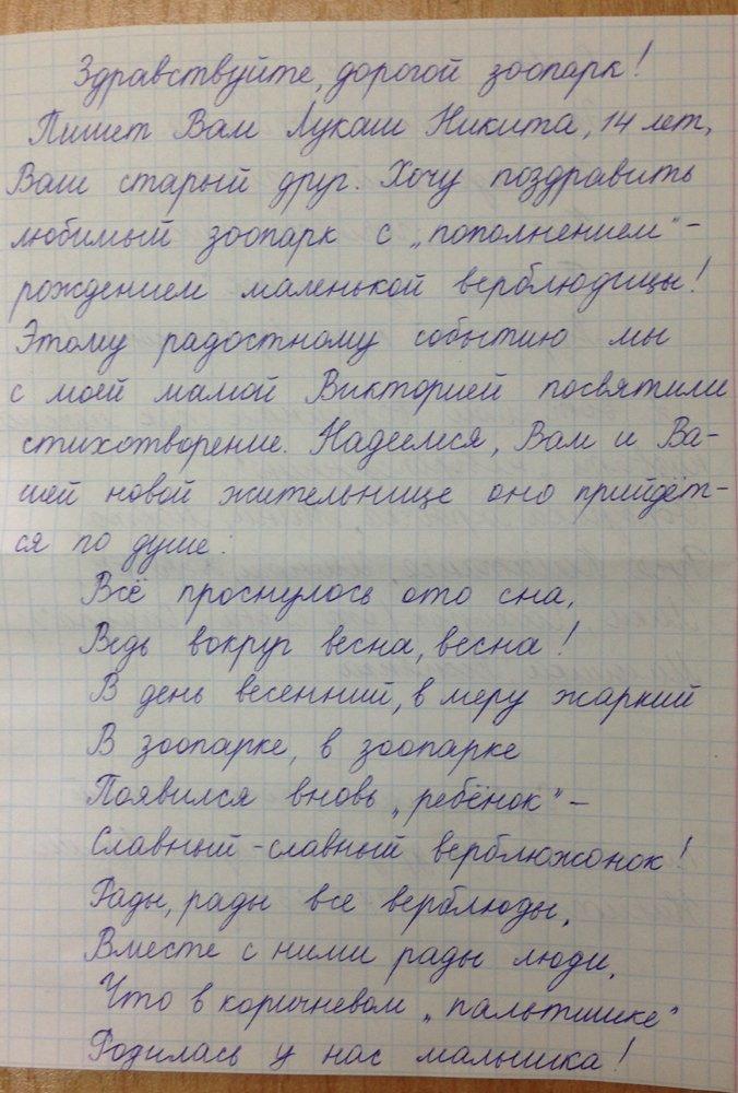 Харьковчане выбрали имя новорожденному верблюжонку (ФОТО), фото-1