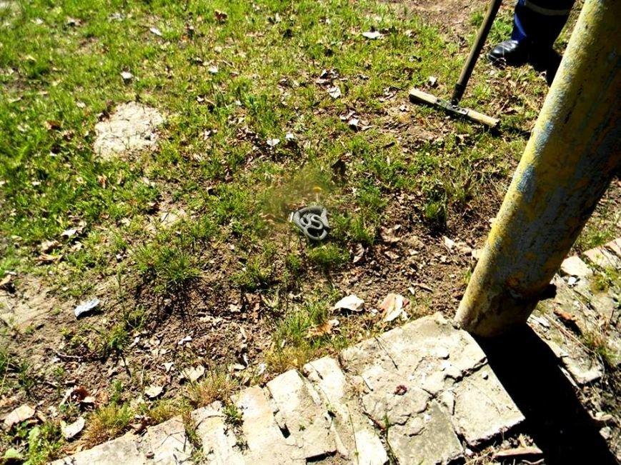 В Каховке спасатели на территории детского сада поймали змею (фото), фото-1