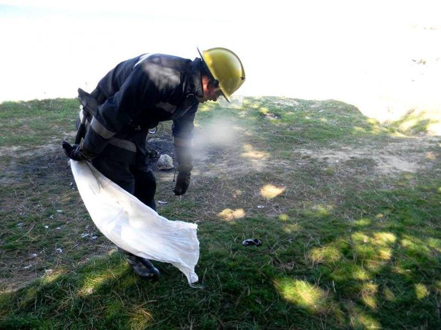 В Каховке спасатели на территории детского сада поймали змею (фото), фото-4