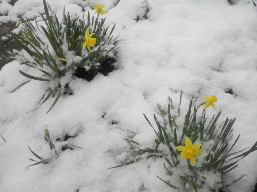 Полоцк и Новополоцк на Пасху замело снегом, фото-1