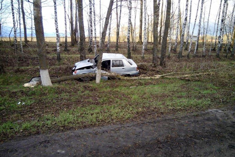 В Прохоровке пьяный пешеход угодил под колёса авто: водитель скрылся, фото-1