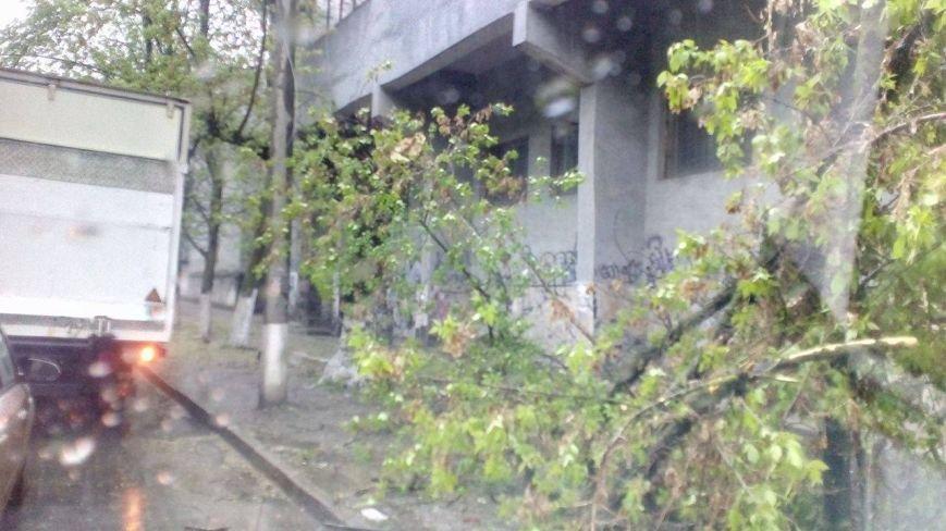 В Херсоне на углу пр. Ушакова и ул. Красного Креста не работает светофор (фото), фото-4