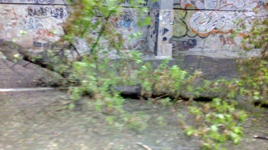 В Херсоне на углу пр. Ушакова и ул. Красного Креста не работает светофор (фото), фото-1