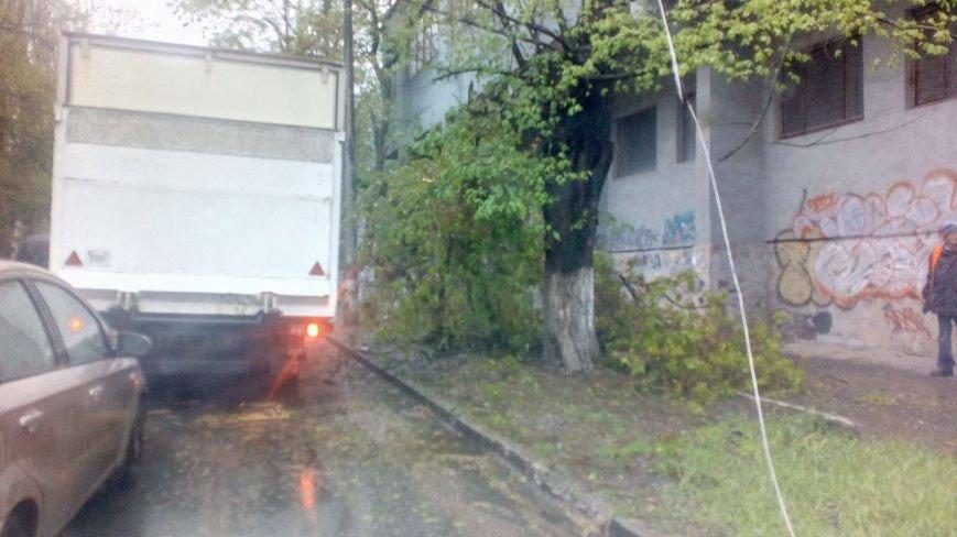 В Херсоне на углу пр. Ушакова и ул. Красного Креста не работает светофор (фото), фото-5