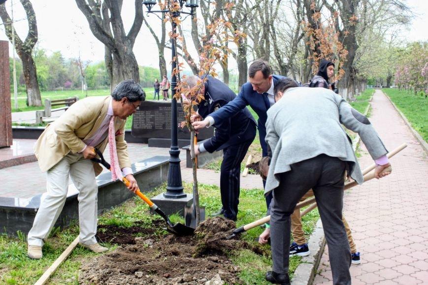 В Ужгороді на Православній набережній та проспекті Свободи дипломат із Японії посадив сакури: фоторепортаж, фото-3