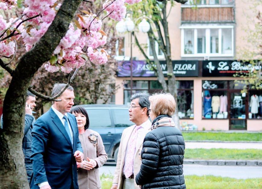 В Ужгороді на Православній набережній та проспекті Свободи дипломат із Японії посадив сакури: фоторепортаж, фото-16