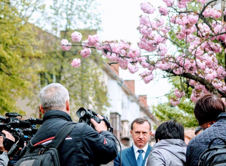 В Ужгороді на Православній набережній та проспекті Свободи дипломат із Японії посадив сакури: фоторепортаж, фото-21
