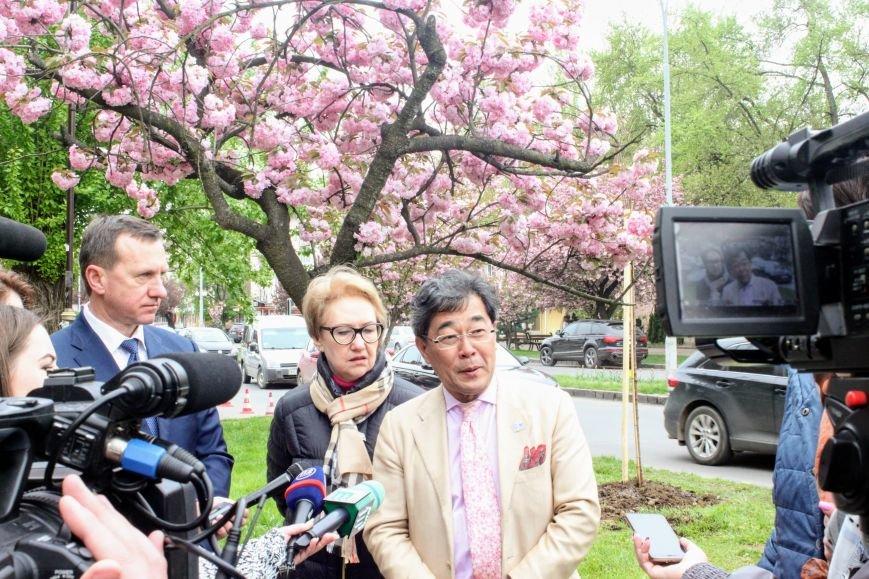 В Ужгороді на Православній набережній та проспекті Свободи дипломат із Японії посадив сакури: фоторепортаж, фото-7