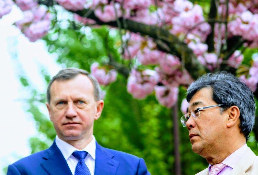 В Ужгороді на Православній набережній та проспекті Свободи дипломат із Японії посадив сакури: фоторепортаж, фото-18