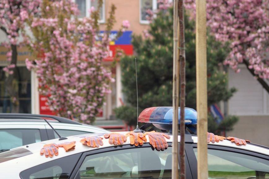 В Ужгороді на Православній набережній та проспекті Свободи дипломат із Японії посадив сакури: фоторепортаж, фото-14
