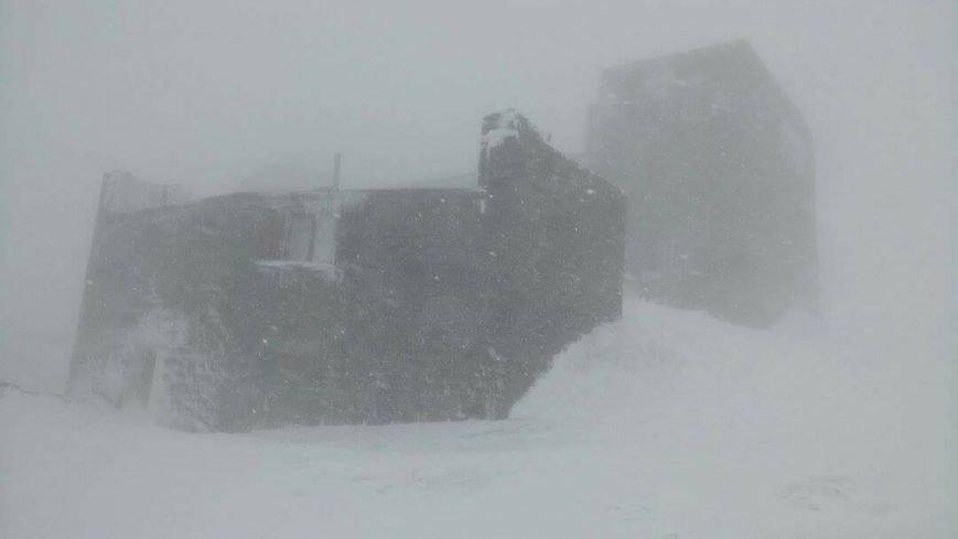 Зима навесні - гора Піп Іван, що на Закарпатті, під щільним покровом снігу: фото, фото-3