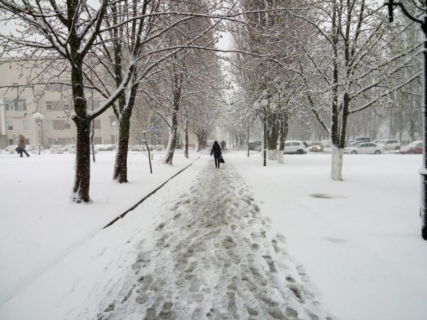 Так себе апрель. Белгородцы обрадовались выпавшему снегу: фотографии из соцсетей, фото-3