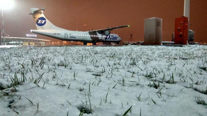 Так себе апрель. Белгородцы обрадовались выпавшему снегу: фотографии из соцсетей, фото-1