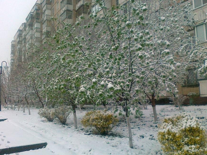 Так себе апрель. Белгородцы обрадовались выпавшему снегу: фотографии из соцсетей, фото-4