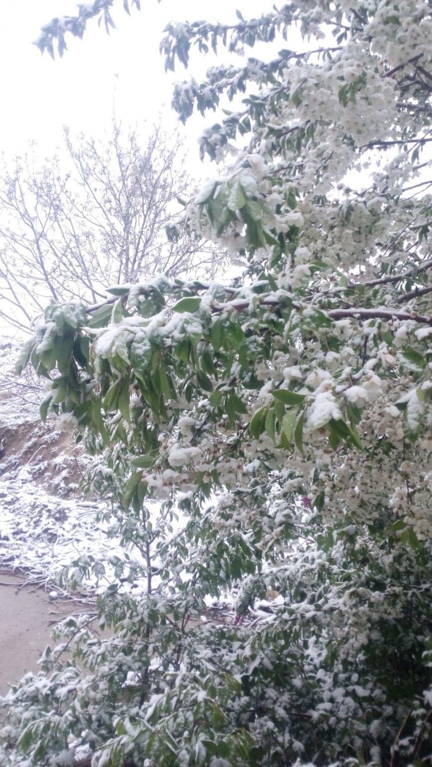 В Крым неожиданно вернулась зима: в Симферополе выпал снег (ФОТО), фото-5