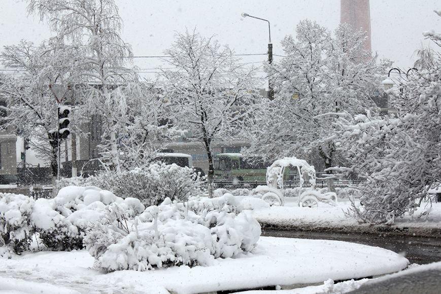 Весна вернётся в Белгород не раньше следующей недели, фото-2