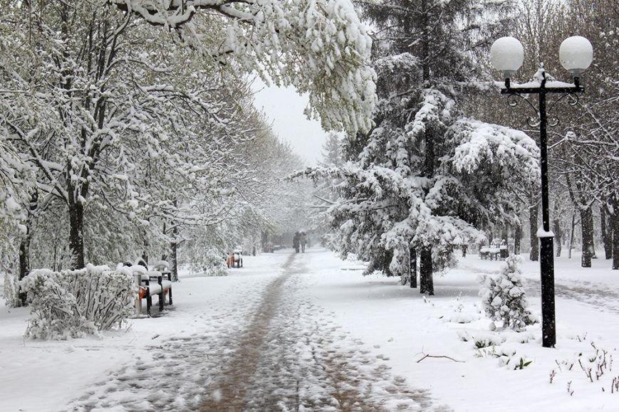 Весна вернётся в Белгород не раньше следующей недели, фото-4