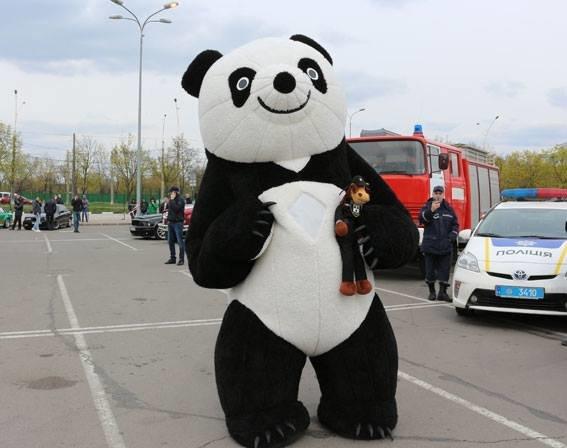 На Сумщині пройшов Всеукраїнський флешмоб з безпеки дорожнього руху (ФОТО), фото-4