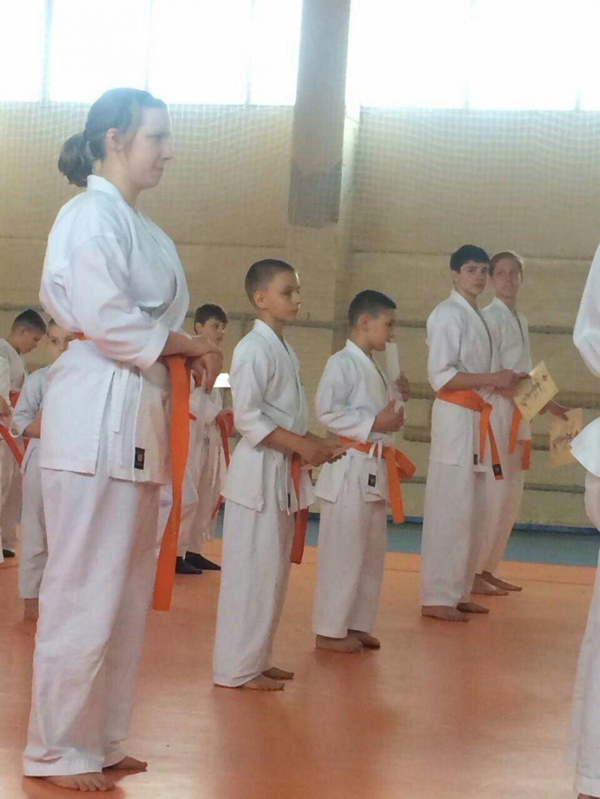 У Покровську відбувся семінар з карате кіокушинкай, фото-1