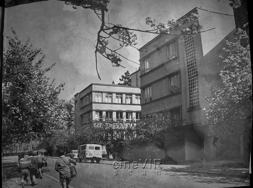 Як виглядали ужгородські сакури 45 років тому: фото, фото-1