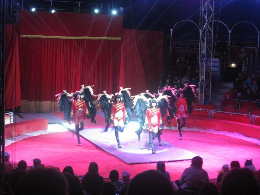 """Поради для конотопців, котрі планують відвідати цирк """"Кобзов"""", фото-7"""