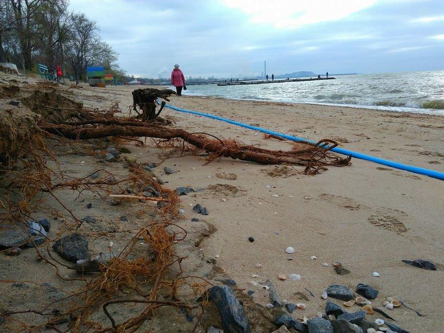 Штормовой ветер показал, что скрывалось под песком мариупольского пляжа (ФОТО), фото-2