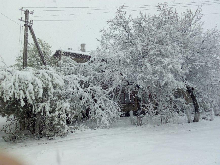 13,5 сантиметров, я в шоке! Девушка измерила ...снежный покров в Одесской области (ВИДЕО), фото-12