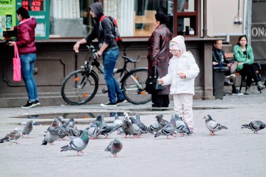 Похолодання в Ужгороді: синоптики чекають на заморозки, сильний вітер та дощ зі снігом (ФОТО), фото-13