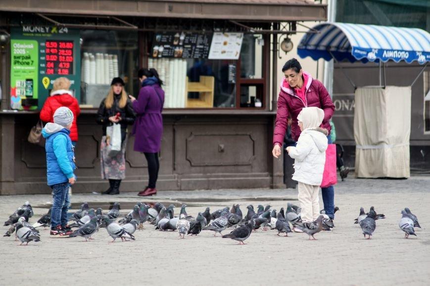Похолодання в Ужгороді: синоптики чекають на заморозки, сильний вітер та дощ зі снігом (ФОТО), фото-5