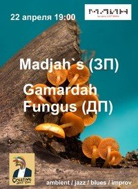 gruppy-madjahsy-i-gamardah-fungusy_9593