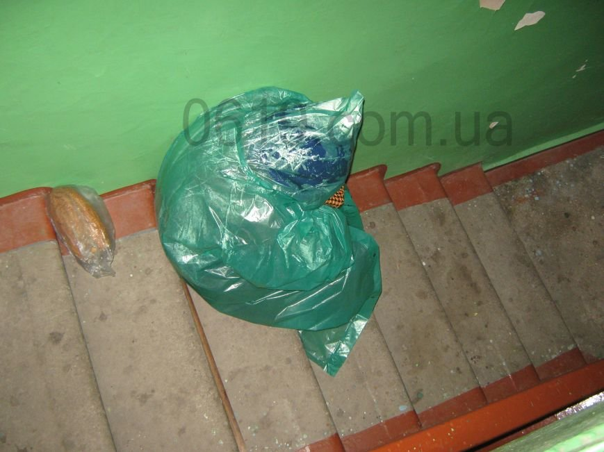 В подъезде мелитопольской многоэтажки живет женщина-бомж, фото-1