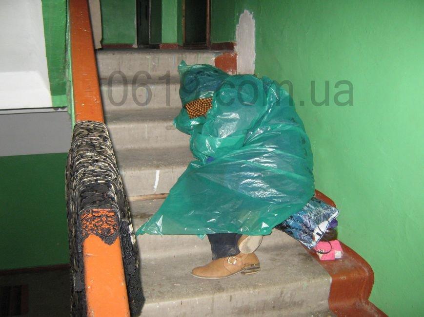 В подъезде мелитопольской многоэтажки живет женщина-бомж, фото-3